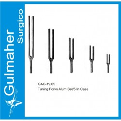 Tuning Forks Alum Set/5 In Case